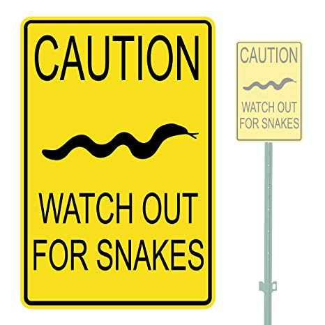 Time to be cautious – Snake season