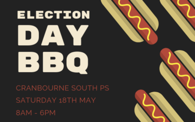 Election Day BBQ